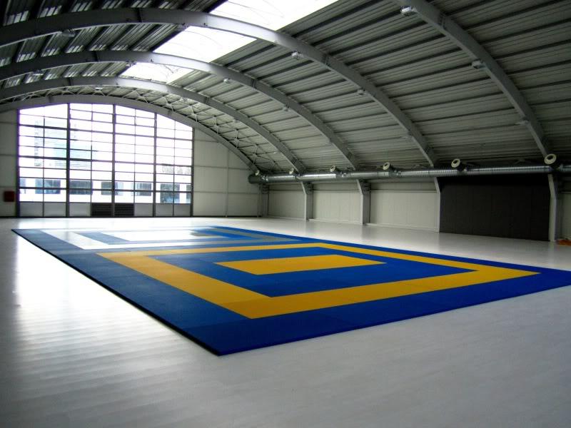 Liceul Sportiv Mircea Eliade